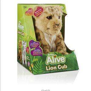 Alive Lion Cub